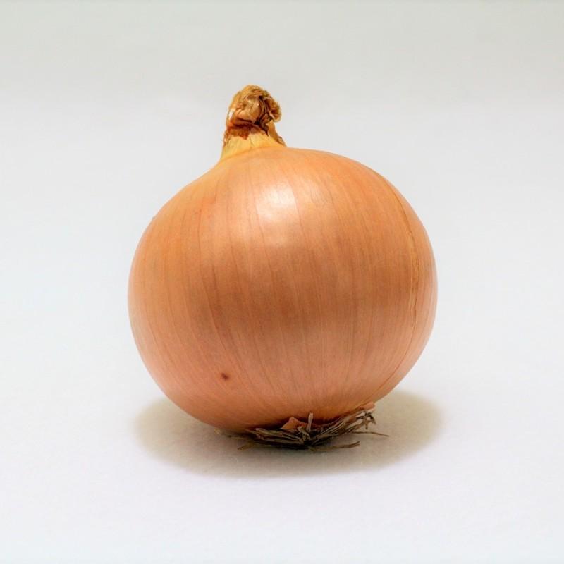 は 部分 の 玉ねぎ 何 大 タマネギ/玉葱/たまねぎ:旬の野菜百科