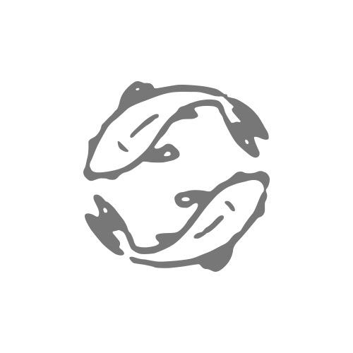 Kamewa logo