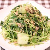レンジで簡単!青梗菜と豆苗、ツナの和え物