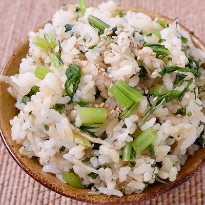 発芽玄米で ちりめんじゃこの菜飯
