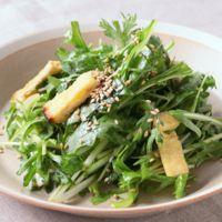 春菊と水菜の簡単しゃきしゃきサラダ