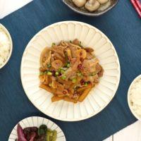 大根と豚肉のスタミナ炒め
