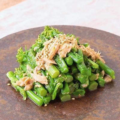 からしドレッシングで 菜の花とツナの和風サラダ
