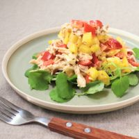 ジューシーオイルささみとパプリカのチョップドサラダ