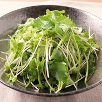 パクチーと水菜のハリハリサラダ