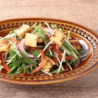 無限に食べられる 水菜と厚揚げのエスニックサラダ