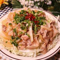 ボリューム満点!キャベツと食べる塩豚丼