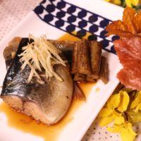 甘辛味でご飯がすすむ!サバの生姜煮