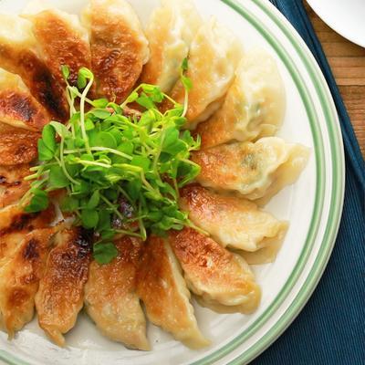 たっぷり大葉と鶏ひき肉の焼き餃子