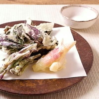 金時草の天ぷら