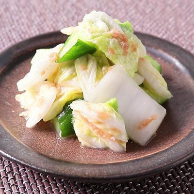 白菜ときゅうりの梅塩麹浅漬け